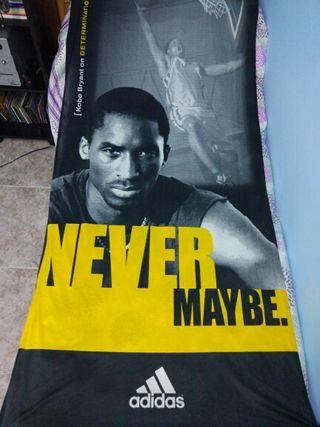 kobe bryant . Lakers .Adidas. NBA. Baloncesto.