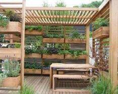 Montaje de jardines medicinales