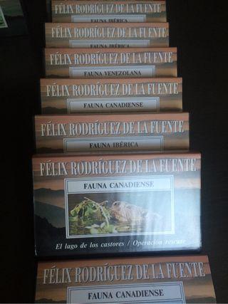 36 videos FELIX RODRIGUEZ DE LA FUENTE