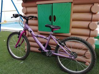 bicicleta niño-niña de 20 pulgadas