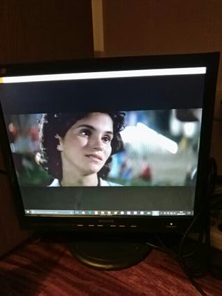 Monitor Philips 170s