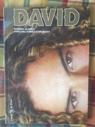Libro david bisbal increible