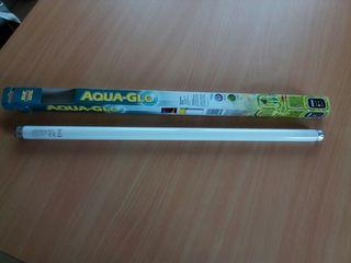 fluorescente acuario