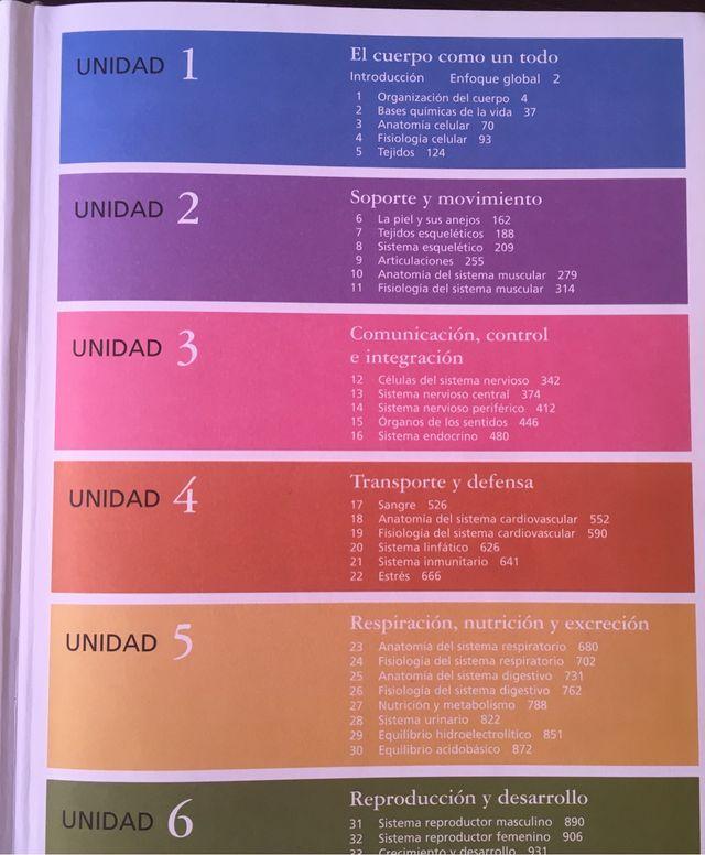 Perfecto Sistema Respiratorio Anatomía Y Fisiología Colorante Libro ...
