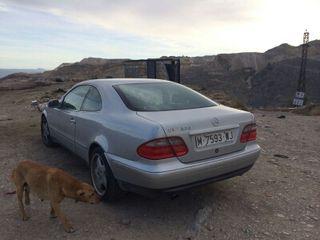 Mercedes-benz coche
