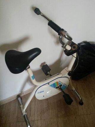 bicicleta estatica bh vintage