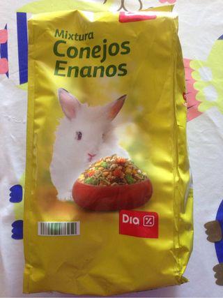 Mixtura de conejos enanos