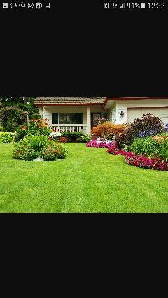 Jardinería (jardinero)