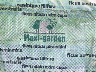 Jardinería y servicios en general