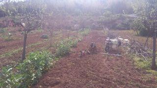 Preparo huertos ecológicos