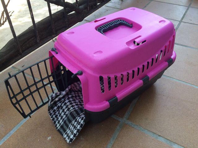 Transportin caja gato perro + regalo