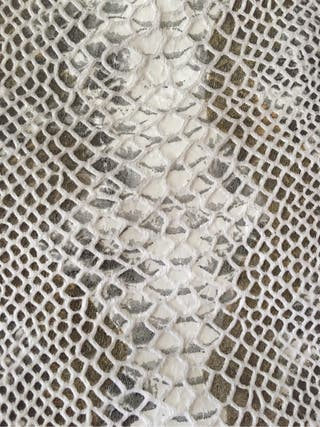 Vestido animal print zara