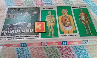 Puzzles de anatomia humana, fantástico para que los niños aprendan jugando