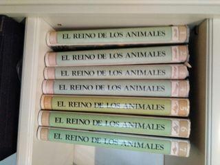 Enciclopedia Reino de los animales