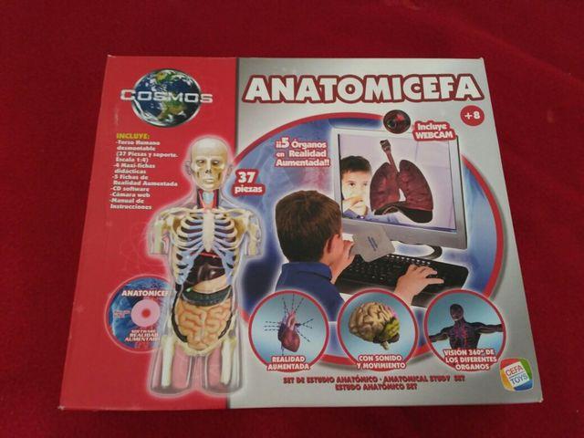 Juego anatomia de segunda mano por 15 € en Onda - wallapop