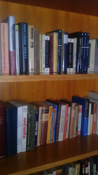 BIBLIOTECA CON 100 LIBROS
