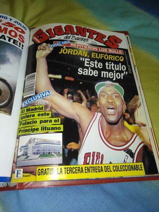 Gigantes del Basket.