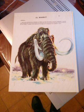 Libro vida intima de la prehistoria