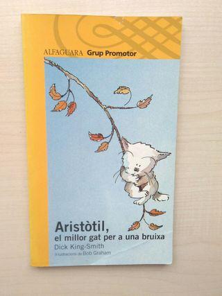 Libro Aristòtil, el millor gat per a una bruixa.
