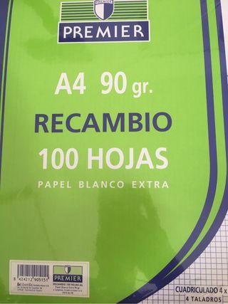 Recambio Cuadricula 100 Hojas