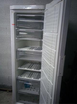 Congelador fagor