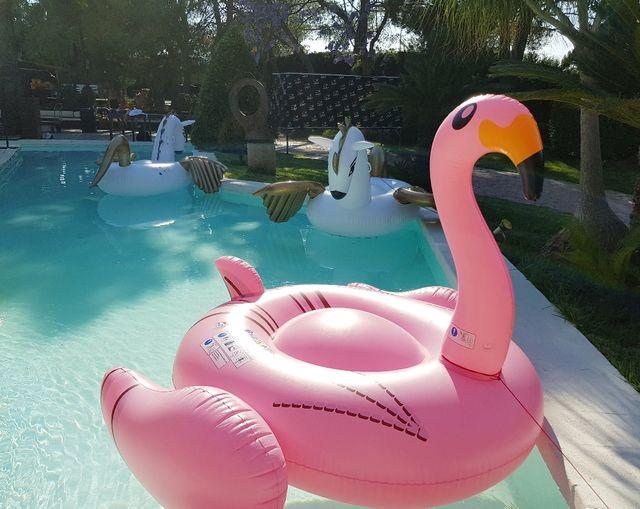 Flotador Gigante Flamingo - Envío 24h!