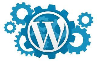 Programador wordpress a medida