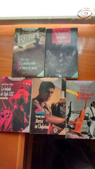 5 Libros Gran Angular