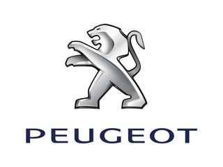 Peugeot 206 hdi 110cv