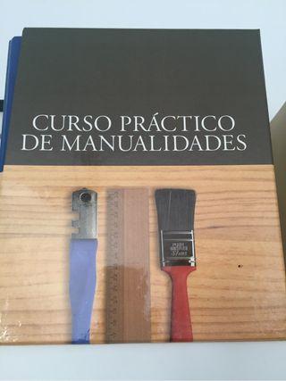 Libro Curso práctico de manuslidades
