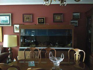 Acuario 500 litros con mueble de segunda mano por 300 en oviedo en wallapop - Wallapop asturias muebles ...