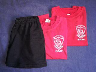 Santa Maria del Pilar Camiseta