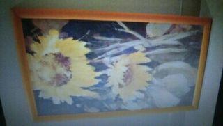 Conjunto cuadros girasoles.
