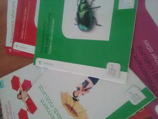 libros de texto cuarto primaria