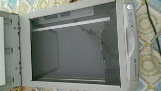 scan epson 1670