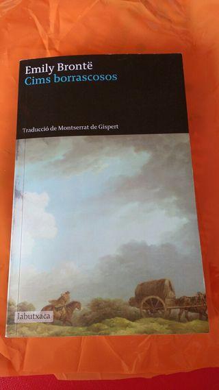 Cims borrascosas, Emily Brontë