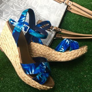 Cuña azul tropical