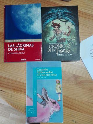Libro de lectura de lengua