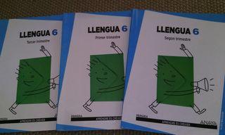 Llengua 6 primaria