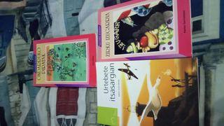 Libros de euskera