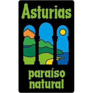 Envíos Portes Mudanzas Madrid - Asturias - Madrid