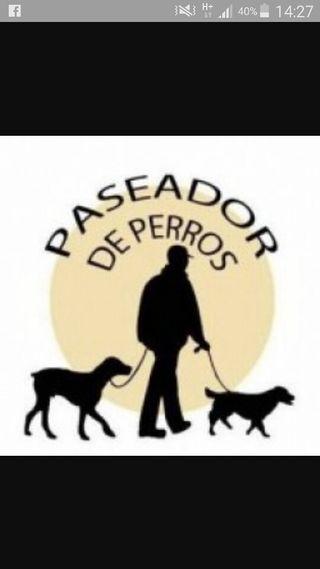 paseador de perros y estancia vacacional