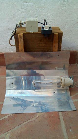 Temporizador Reflector con bombilla
