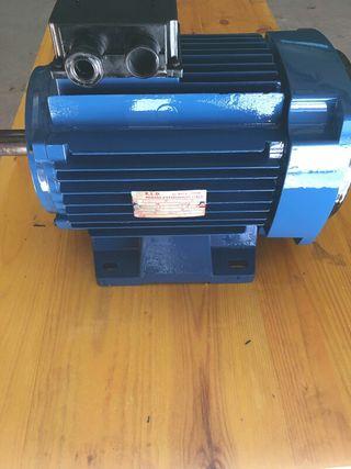 Motor 5,5 HP 3000 RPM