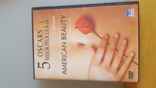 DVD American Beauty