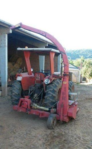 maquina del maiz en Lancara