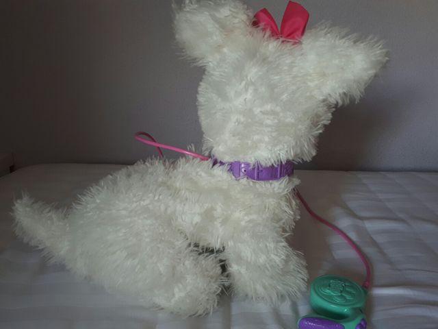 Mi perrito GOGO