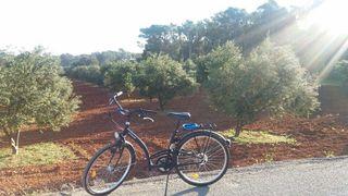 """bicicleta de paseo rodado 26"""""""