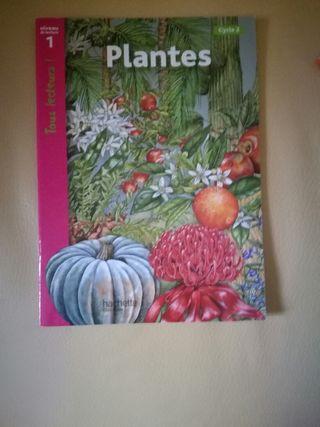"""Libro """"Plantes"""""""