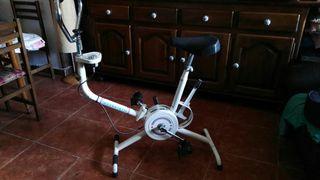 bicicleta estatica y accion de remo
